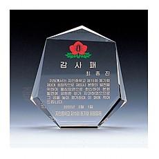감사패/FP-1009/160*172*35mm(대)